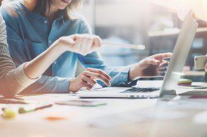 ソフトウェアの受託開発及び開発支援、Web関連事業